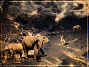 Kenia3_p109_v1-big-shst-dft_v1